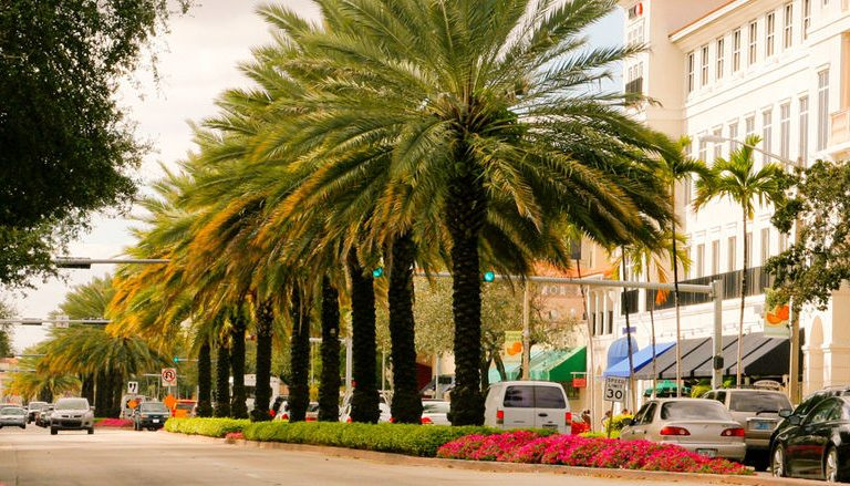 Find a Miracle in Coral Gables Downtown, Miracle Mile